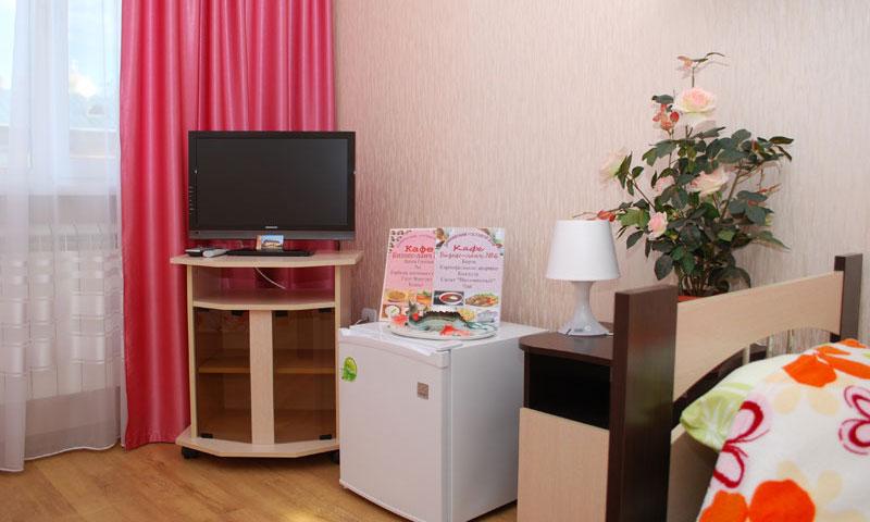 Фотография телевизора и холодильника в Дивеевском гостевом Доме